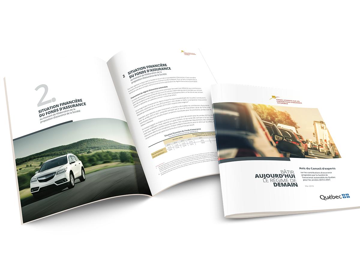 portfolio rapport annuel conseil d experts contributions assurance automobile. Black Bedroom Furniture Sets. Home Design Ideas