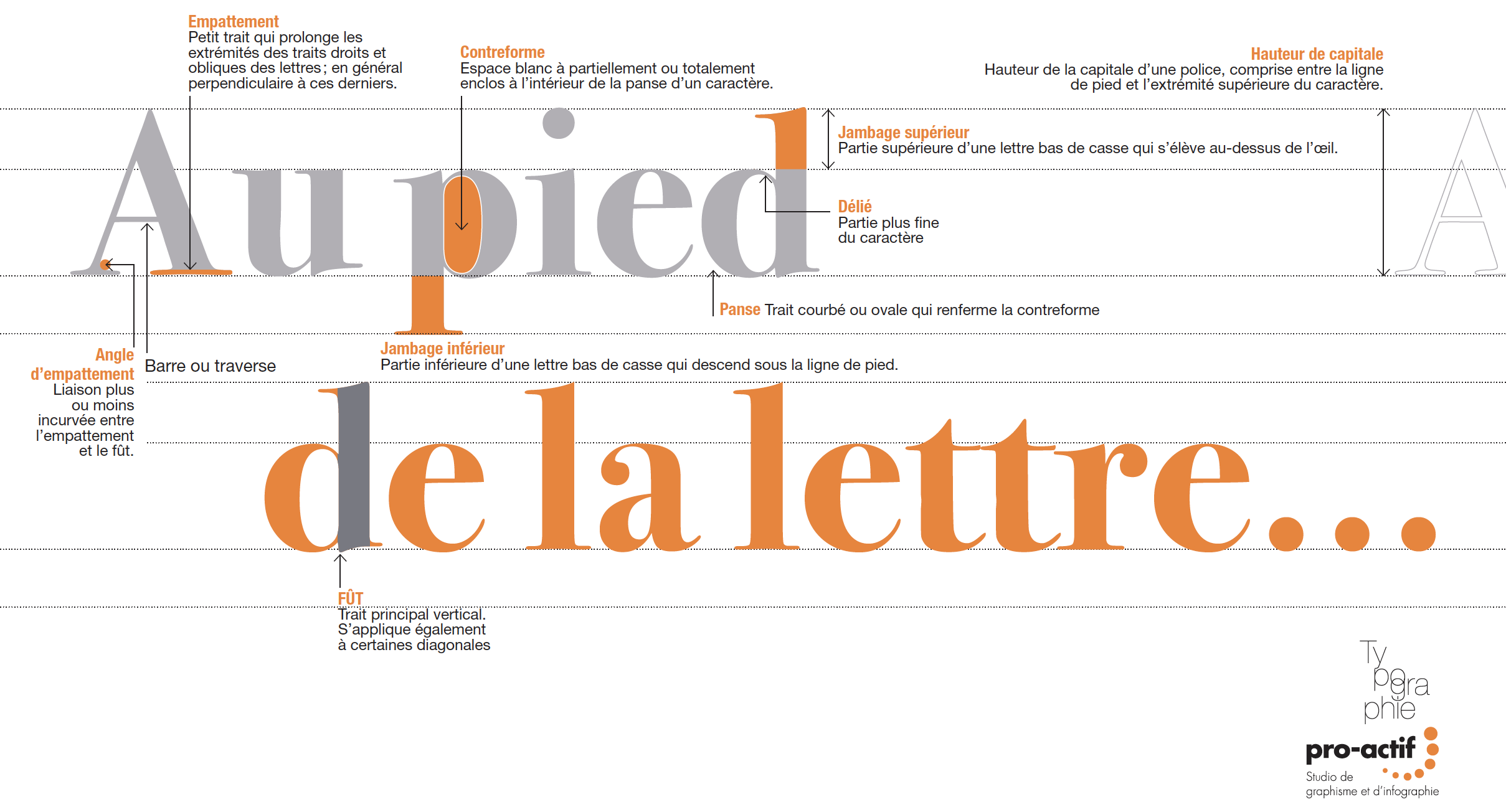 Anatomie de la lettre
