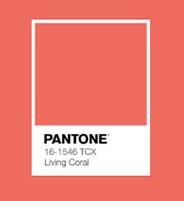 Pantone couleur de l'année 2019
