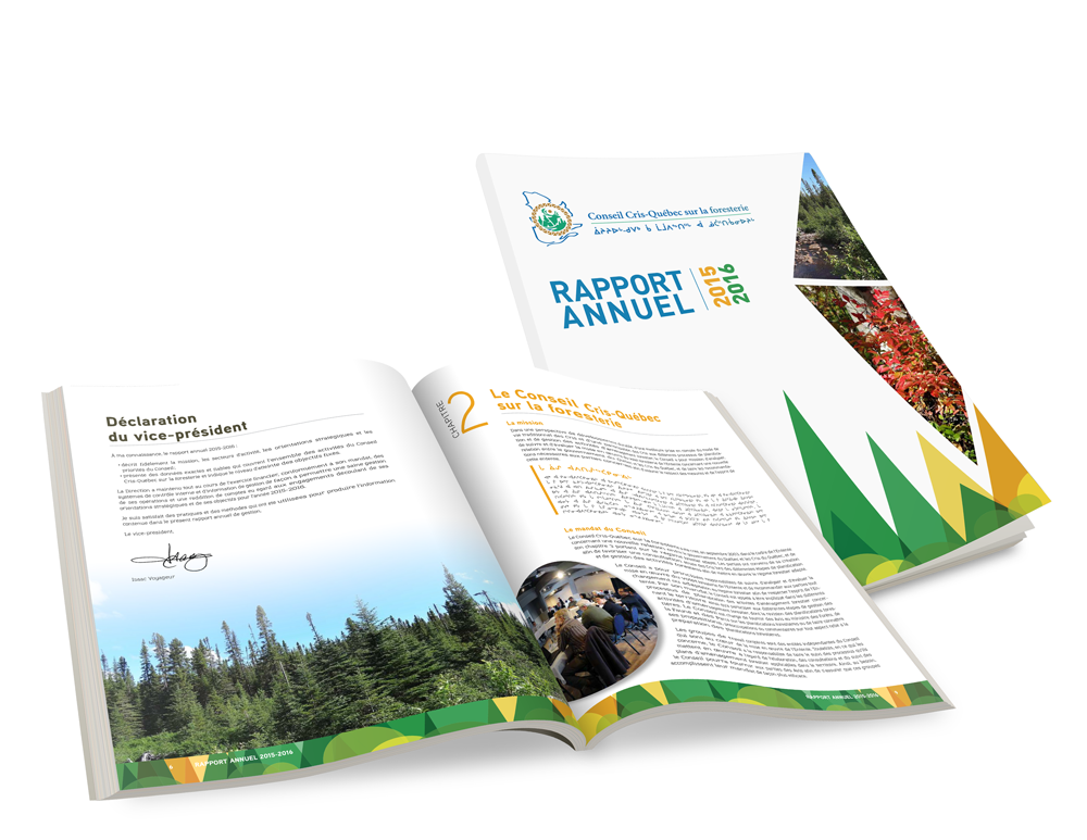 Rapport Annuel: Cri Québec Foresterie