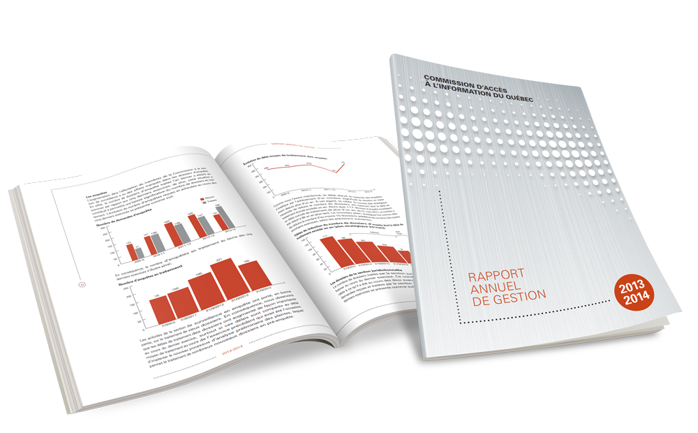 Rapport Annuel Gestion CAI