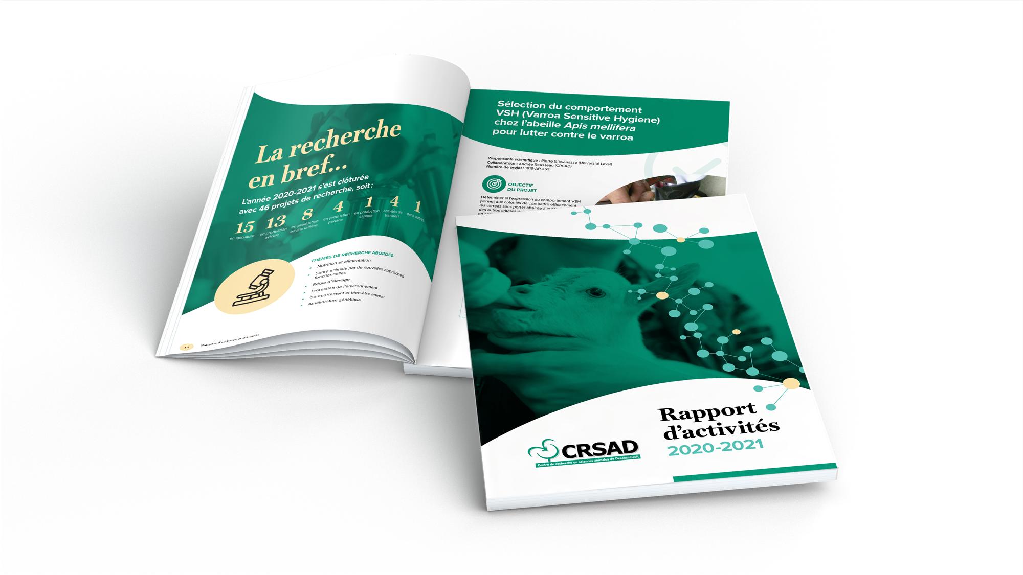 Rapport annuel CRSAD